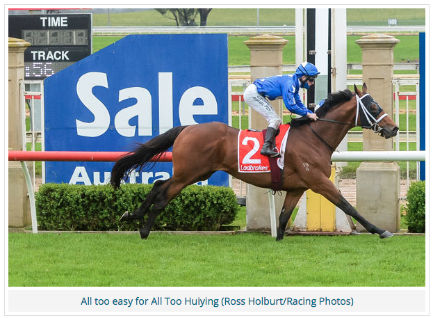 Breednet – ALL TOO HUIYING takes SALE CUP in a canter