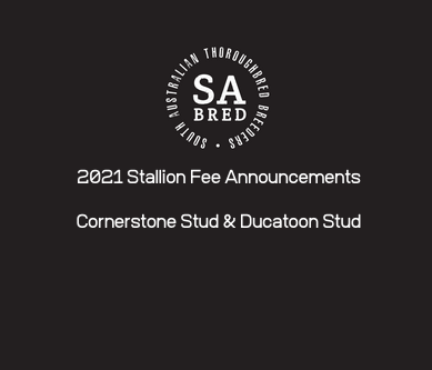 Podcast Link – Stallion Fees 2021